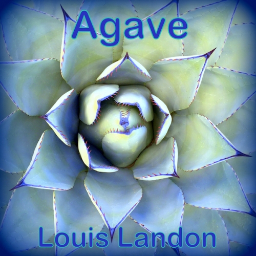 Agave single cover small 600